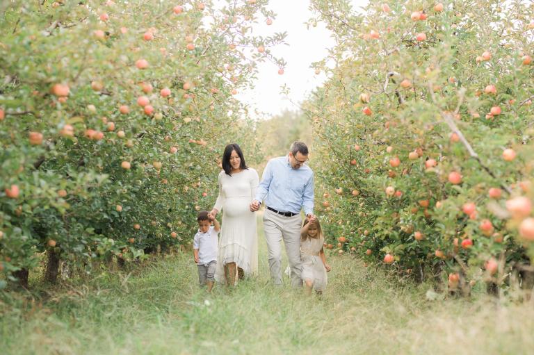 Fall Apple Orchard Maternity Photographs | Sweet Caroline Photographie